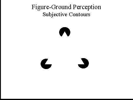 sensation perception 8th edition pdf